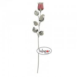 Rosa color rosa puntas blancas de tallo largo 30cm